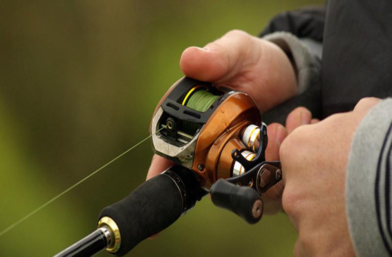 چرخ ماهیگیری